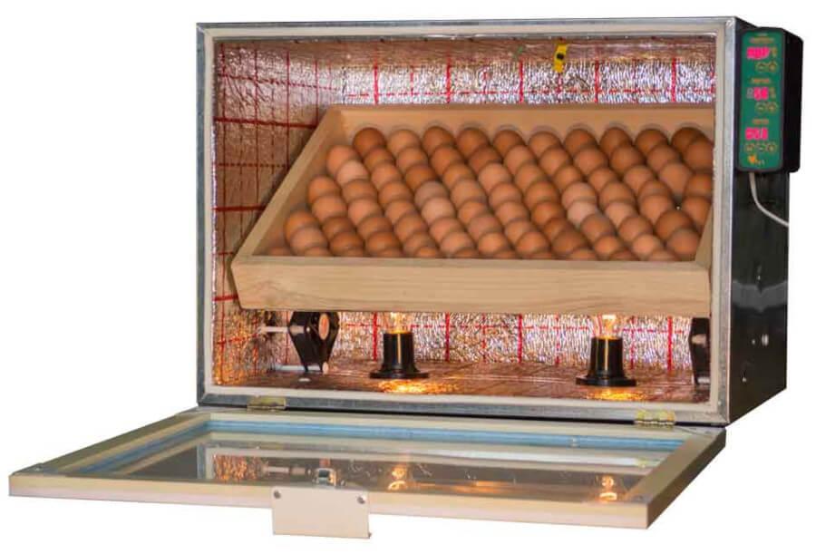 На фото бытовой инкубатор Тандем. Внутри закладка яиц